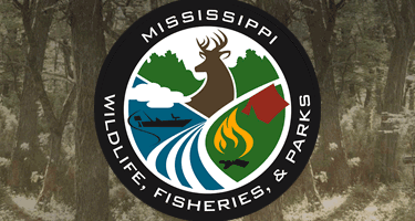Deer Diseases Found in Tippah and Alcorn Counties